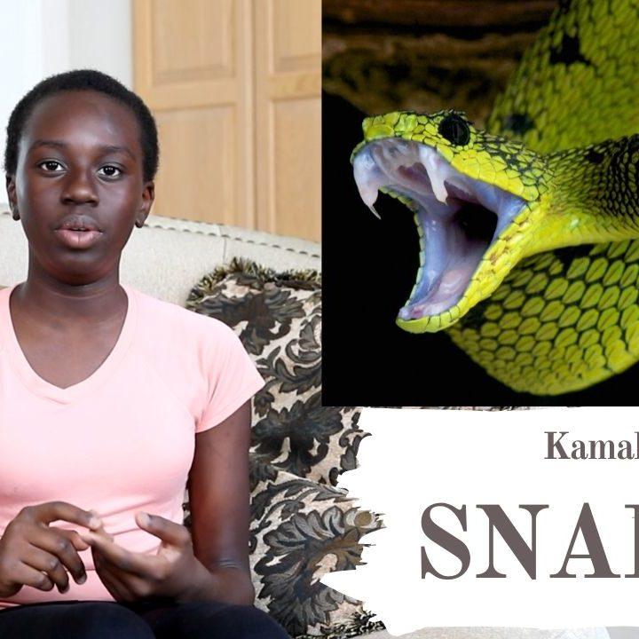 Snakes by TasteofSouthSudan Children's Corner